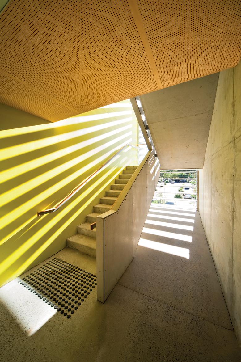 urban architects